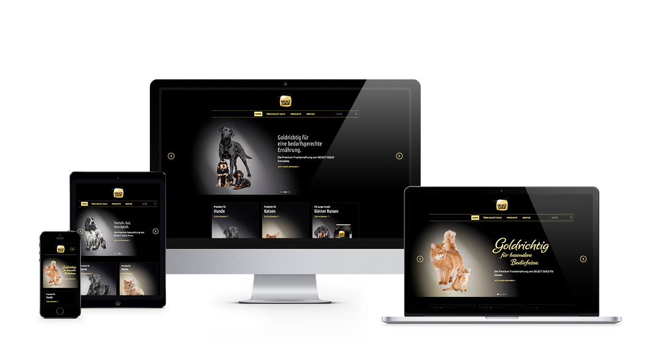kontrast cases selectgold web responsive First slide
